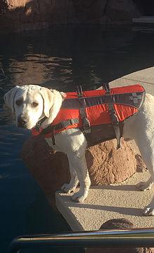 Apollo life jacket